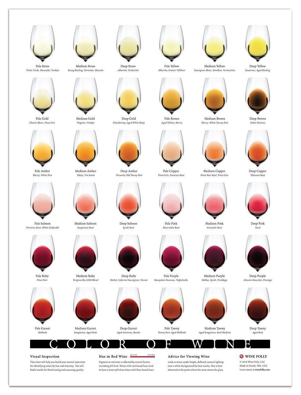 Amazon.com: Wine Folly Color of Wine Poster Print (18