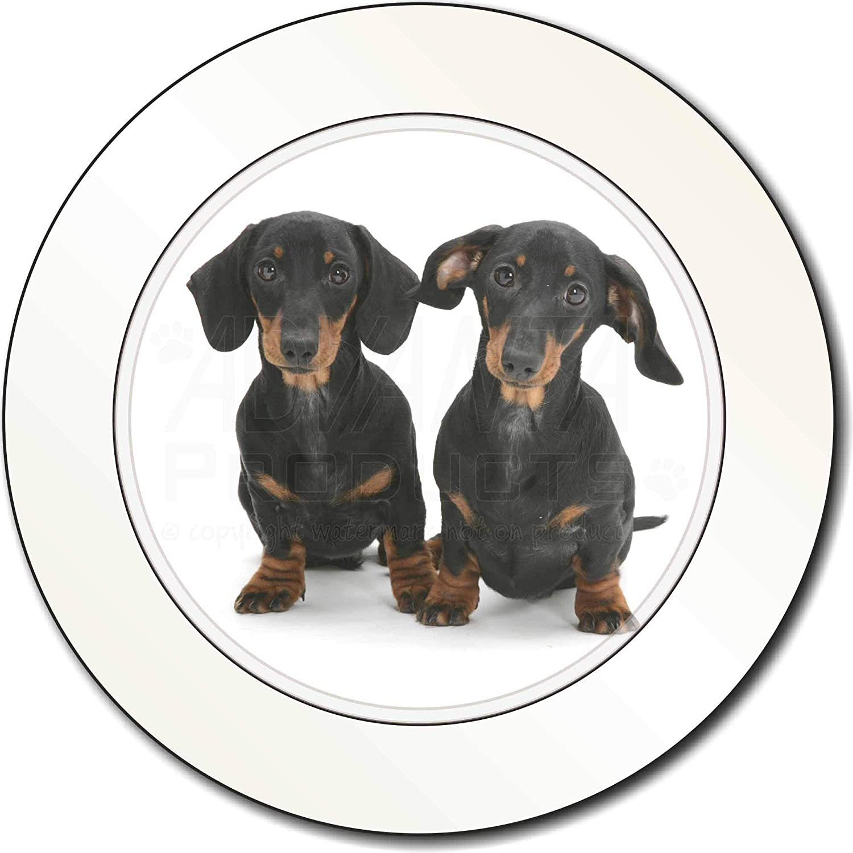 Ref:AD-DU2T Dachshund Dogs Car Tax Disc Holder New Animal