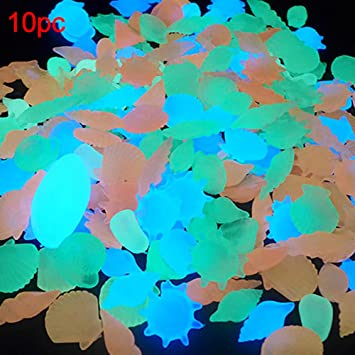 100 piedras brillantes en la oscuridad para estanques de jardín, conchas, conchas de mar, para decoración de acuario y pecera.: Amazon.es: Hogar