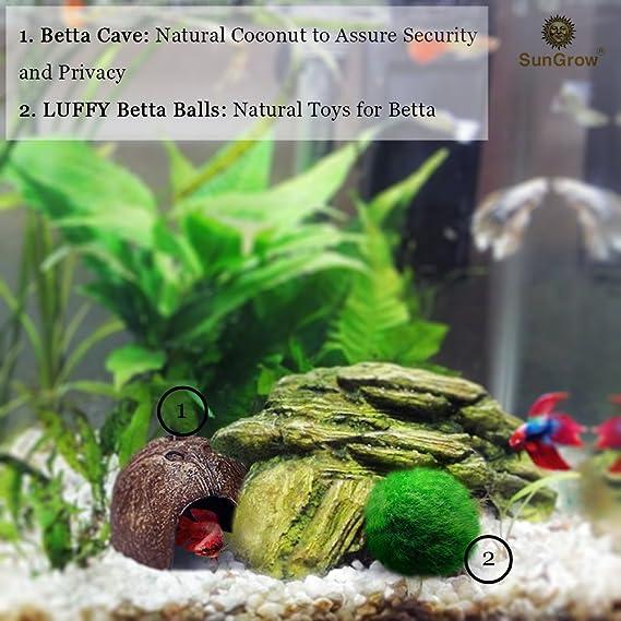 Sungrow Betta Cave Natural Habitat Made From Coconut Shells Soft