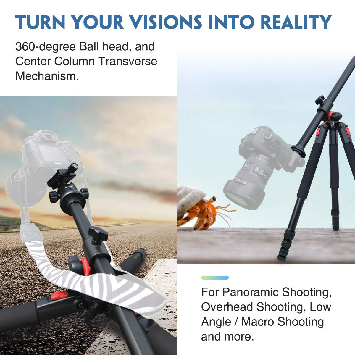 Moman Camera Tripod with Telescopic Horizontal Column Arm and Ball Head for Macro Shoot/Overhead Photography/Travel / DSLR Camera Video Camcorder by Moman (Image #2)