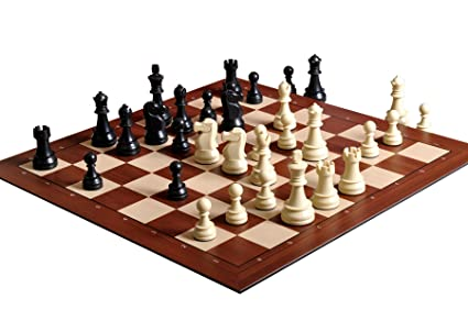 Amazon com : DGT The Smart Chess Board with Notation with Black and