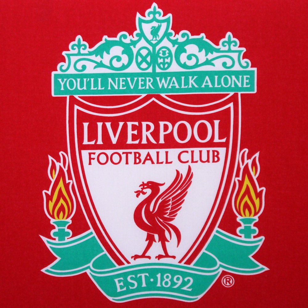 Liverpool Fc Bedroom Accessories Childrens Liverpool Football Club Crest Red Single Bed Divan