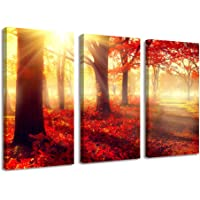 BIL-YOPIN Wall Art Stretched Canvas Prints Wall Paintings for Bedroom - 3 Panels