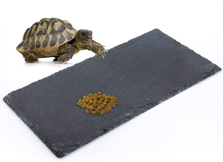 dojobkinb Reptile Basking Platform, Tortoise Feeding Food Dish, Reptile Food Dish Grinding Nail Landscape Habitat Decor for Lizard Bearded Dragon Turtle Crested Gecko Snake