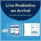 Klaire Labs Vital-Dophilus Plus Probiotic - 5