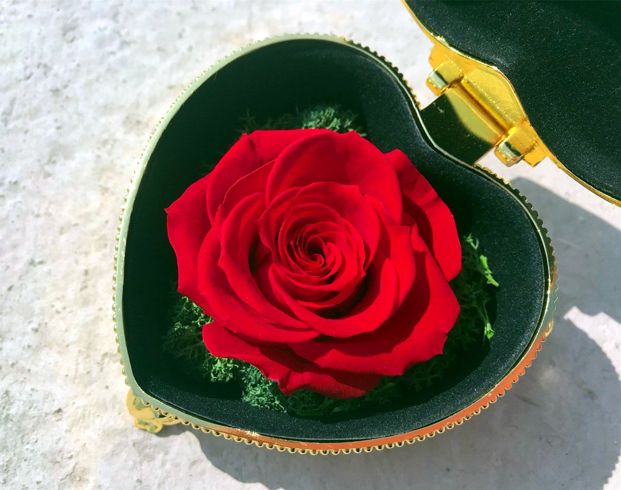 Hey June Handmade Preserved Rose Never Withered Roses Upscale