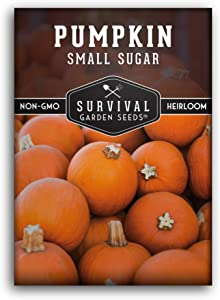 Survival Garden Seeds -Small Sugar Pumpkin Seed for Planting - Packet with Instructions to Plant and Grow in Your Home Vegetable Garden - Non-GMO Heirloom Variety