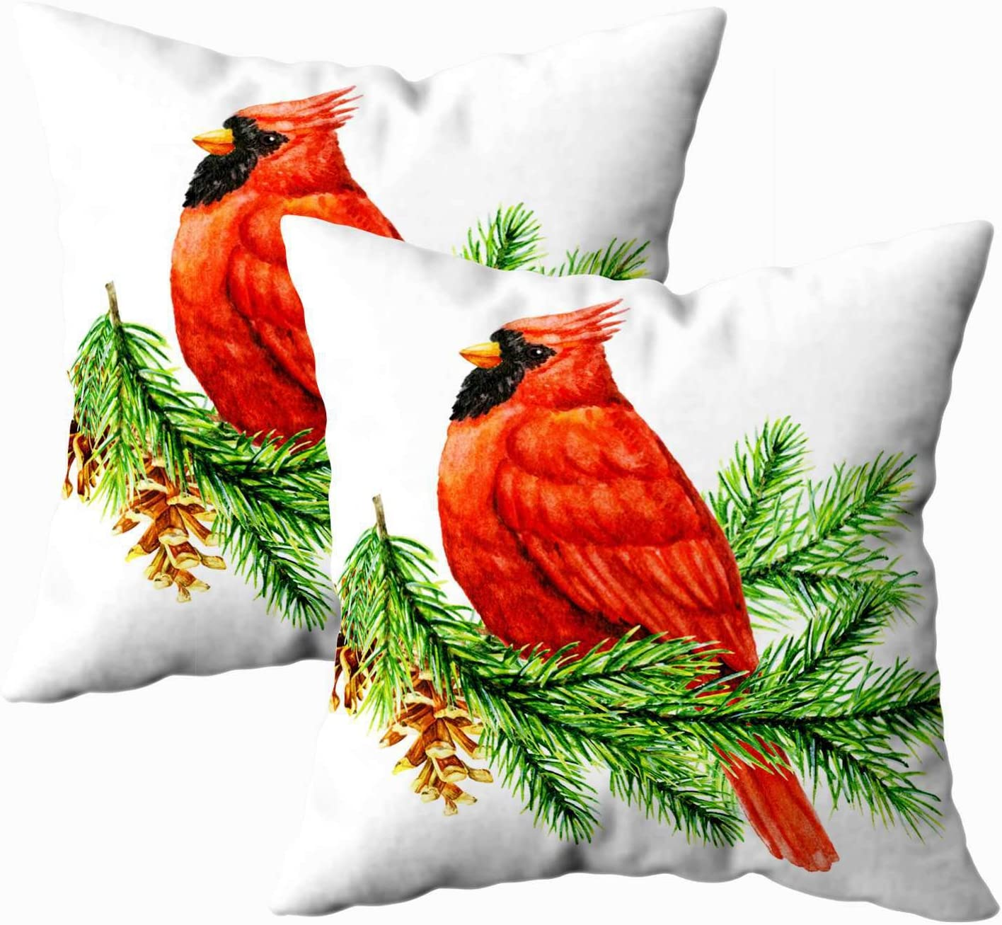 Amazon Com Bisead Sofa Pillows Square Pillow Cases Pack Of 2 18x18inch Red Cardinal Bird Pine Winter Christmas Painted Greeting Card On White Background Throw Pillow Case Cushion Cover Clear Green Home Kitchen
