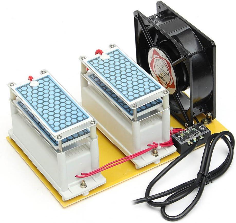 Alftek AC 110 V/220 V 20 g Comercial Generador de Ozono ...