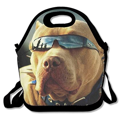 7cfbf750046b Amazon.com - NEWINESS Women Men Kids Pitbull Dogs Insulated Neoprene ...