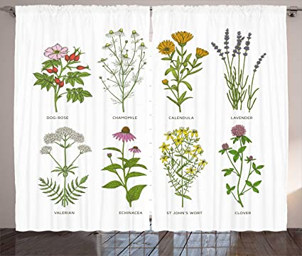 Amazon com: Ambesonne Herb Curtains, Sweet Natural Cosmetics Flowers