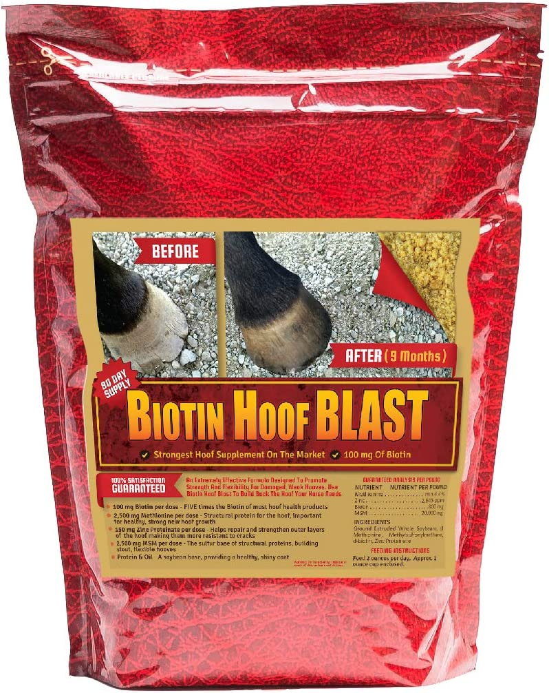 BIOTIN HOOF BLAST CONCENTRATED EQUINE HOOF SUPPLEMENT WITH 100 MG OF BIOTIN, MSM METHIONINE