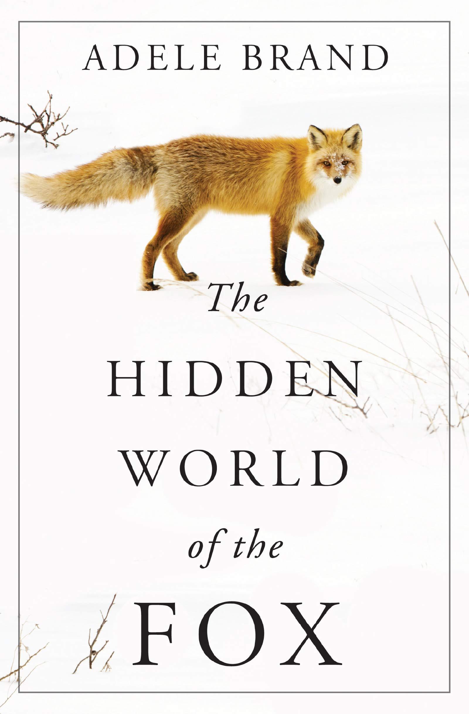 The Hidden World of the Fox: Brand, Adele: 9780062966100: Amazon.com: Books