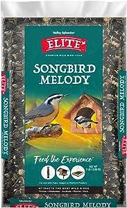 Valley Splendor Elite Songbird Melody