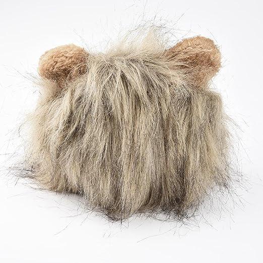 GreatFun Furry - Peluca de león para Gato, Halloween, Vestido con Orejas: Amazon.es: Productos para mascotas