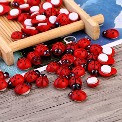 Amazon.com: Ladybug Decorations Ladybug Decor – 100 piezas ...