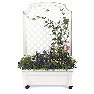 Planter with Trellis and Self-Watering Reservoir, in White : Garden & Outdoor