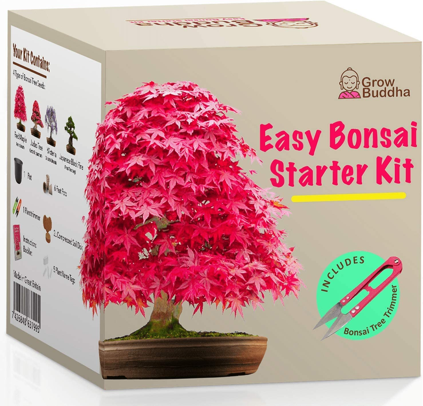 Amazon Com Grow Your Own Bonsai Kit Easily Grow 4 Types Of Bonsai Trees With Our Complete Beginner Friendly Bonsai Seeds Starter Kit Unique Seed Kit Gift Idea Garden Outdoor
