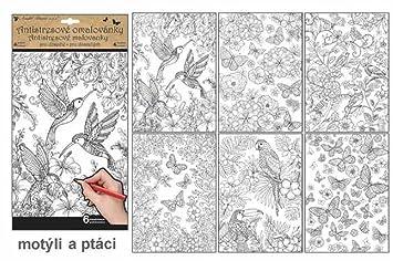 Antistress Ausmalbilder Vögel Und Schmetterlinge Zur Entspannung