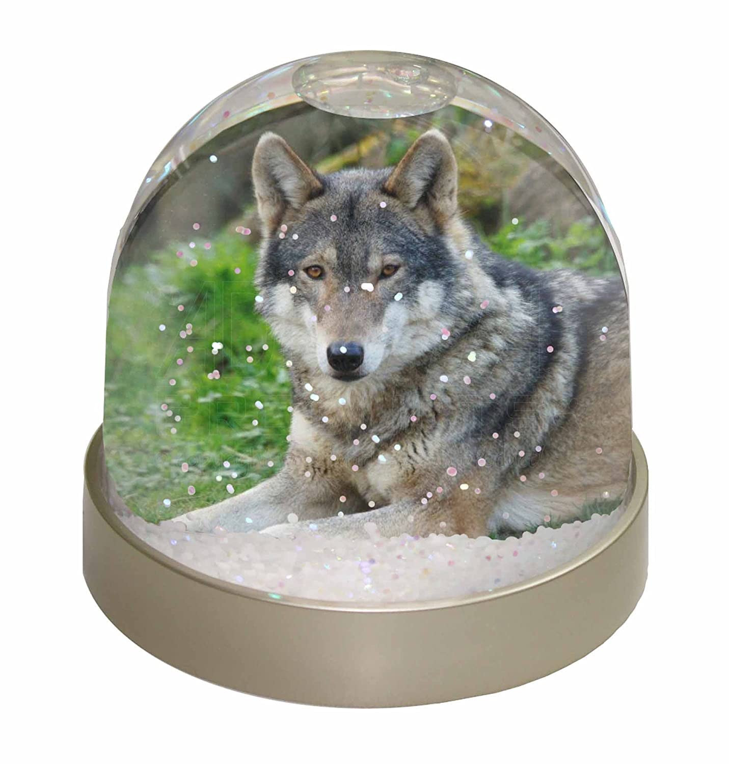 Advanta A Gorgeous Wolf Photo Snow Globe Waterball Stocking Filler Gift, Multi-Colour, 9.2 x 9.2 x 8 cm Advanta Products AW-11GL