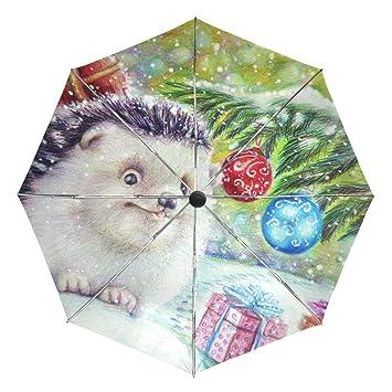 5a3d38234650 Amazon.com : MAPOLO Christmas Hedgehog Gifts Painting Print ...