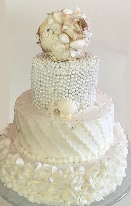 2oz Wedding Cake Seashells Craft Shells Jewelry Wedding Shells Beach Decor