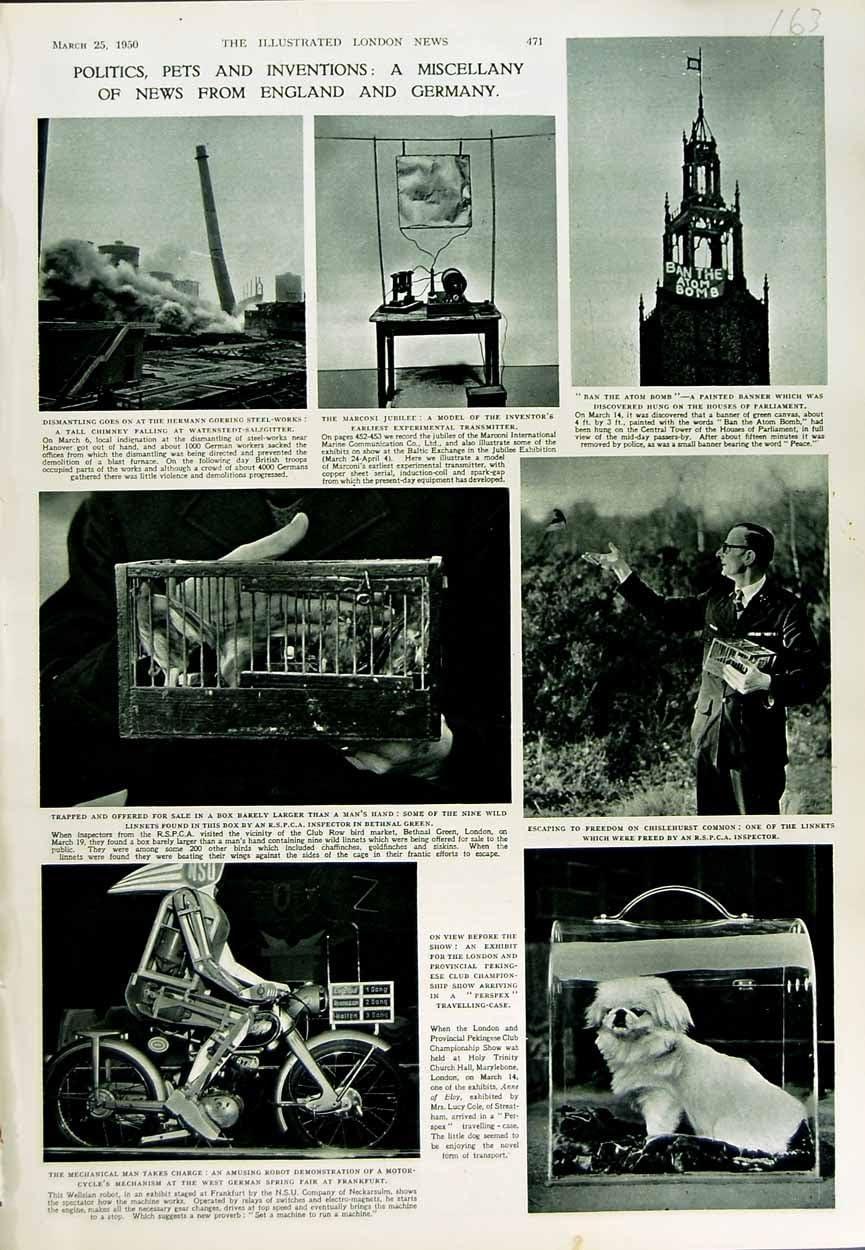 GOERING 1950 de HERMANN de la MOTOCICLETA del ROBOT CHISLEHURST [Cocina y Hogar]: Amazon.es: Hogar