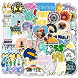 Laptop Stickers Decals 50 Pack for Water Bottles Skateboard iPad MacBook Phone Car Teens Girls Cute Stickers