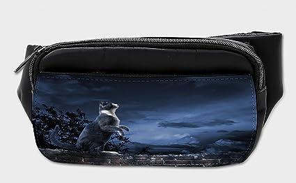 Amazon.com: Bolso para gato Lunarable, diseño de gato en la ...