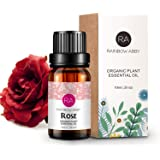 Rose Essential Oil - 100% Pure, Best Therapeutic Grade Essential Oil - 10 ml