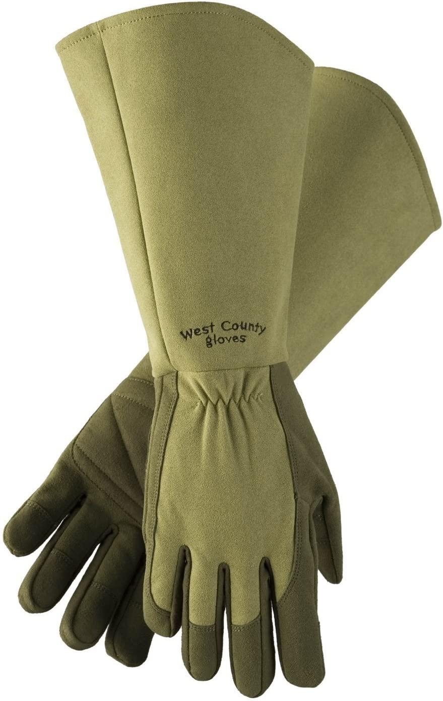 West Chester Protective Gear 054M/S West County Gardener Gauntlet Rose Gloves – Small, Moss, Gardening Gloves w/Elastic Wrist, Reinforced Fingers, Palm, and Thumb