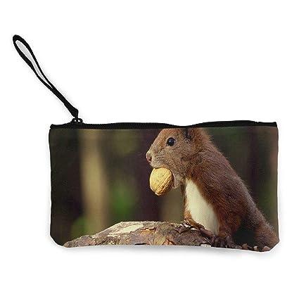 zip the squirrel
