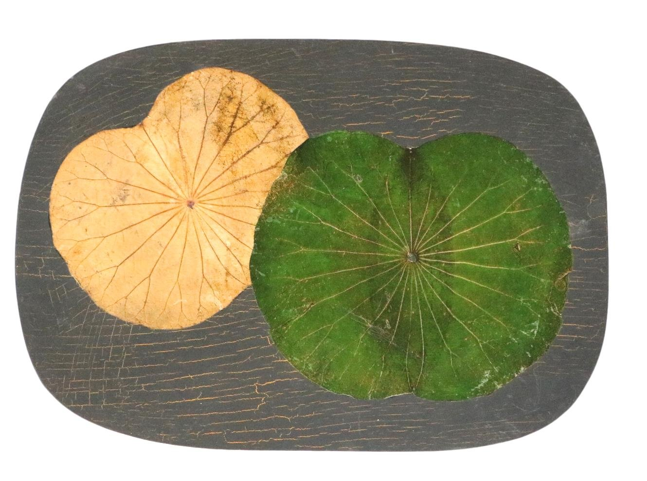 Set of 4 Real Lotus Leaf Embossed Placemats on Wood Pallet (Green Lotus)