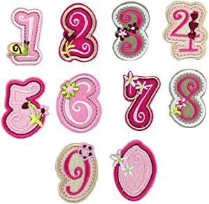 XUNHUI Number 0-9 Patches Pink Cute for Clothing Iron On Applique Embroidery Sticker Badge DIY Garment Jeans Accessories 10PCs/Set