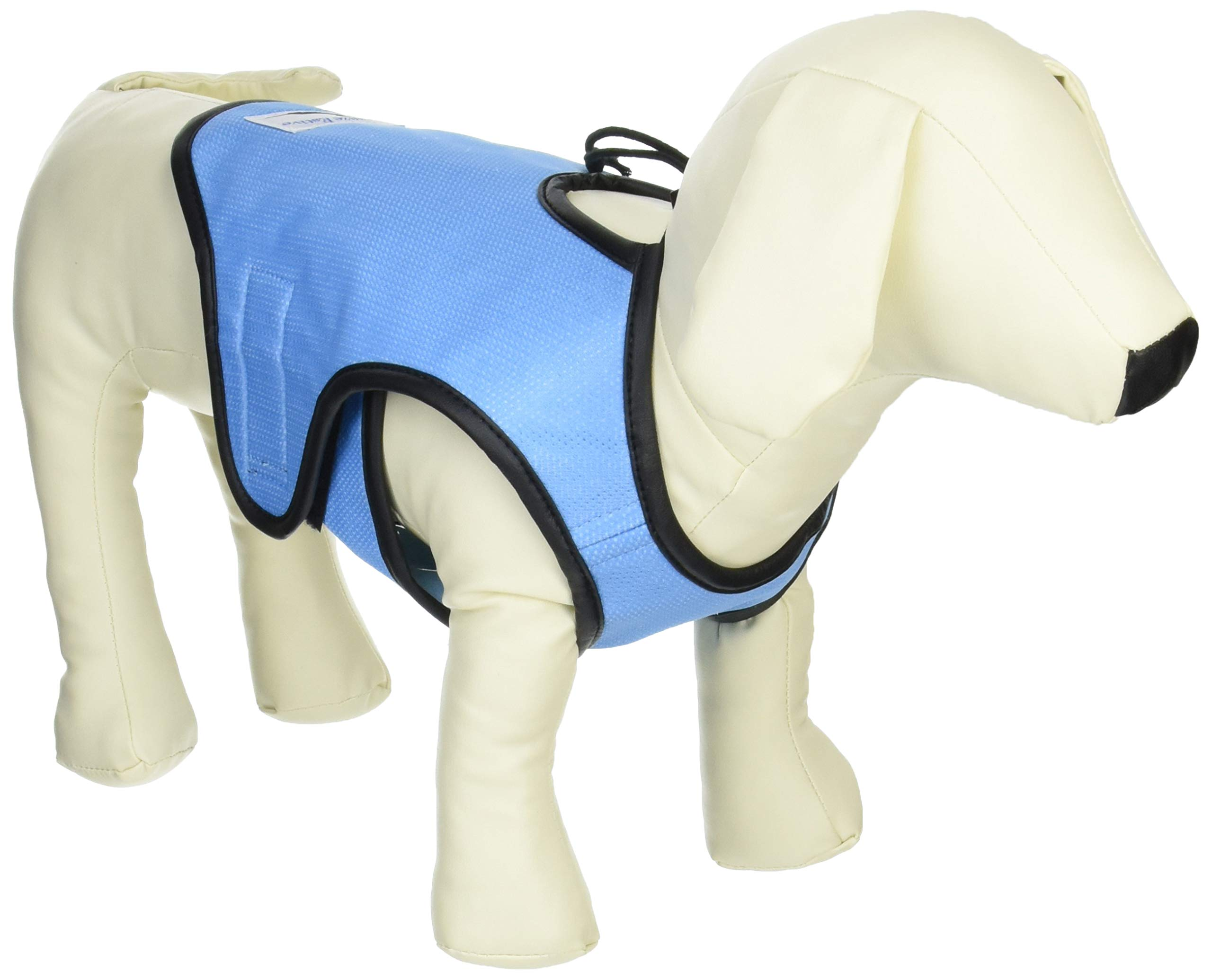 Cool Vest for Dogs, Blue, Small by Gramercy