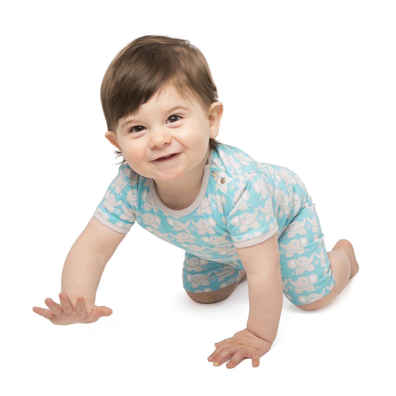 823fdb2171de Amazon.com  baby deedee Short Sleeve Cotton 2 Piece Tee Shirt Shorts ...