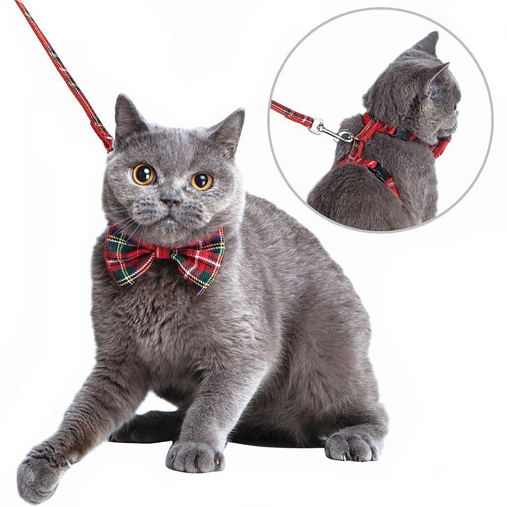 SCENEREAL CO.. Cat Harnais Réglable avec Amovible Bowtie-for Kitty & Lapin, Harnais et Laisse Set, Rouge SAILE