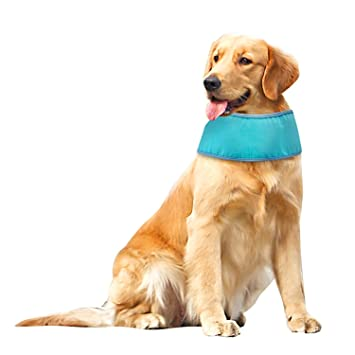 BINGPET Dog Summer Cooling Bandana Ice Chill Puppy Out Scarf for Puppy Chill Pet   5d4dbd