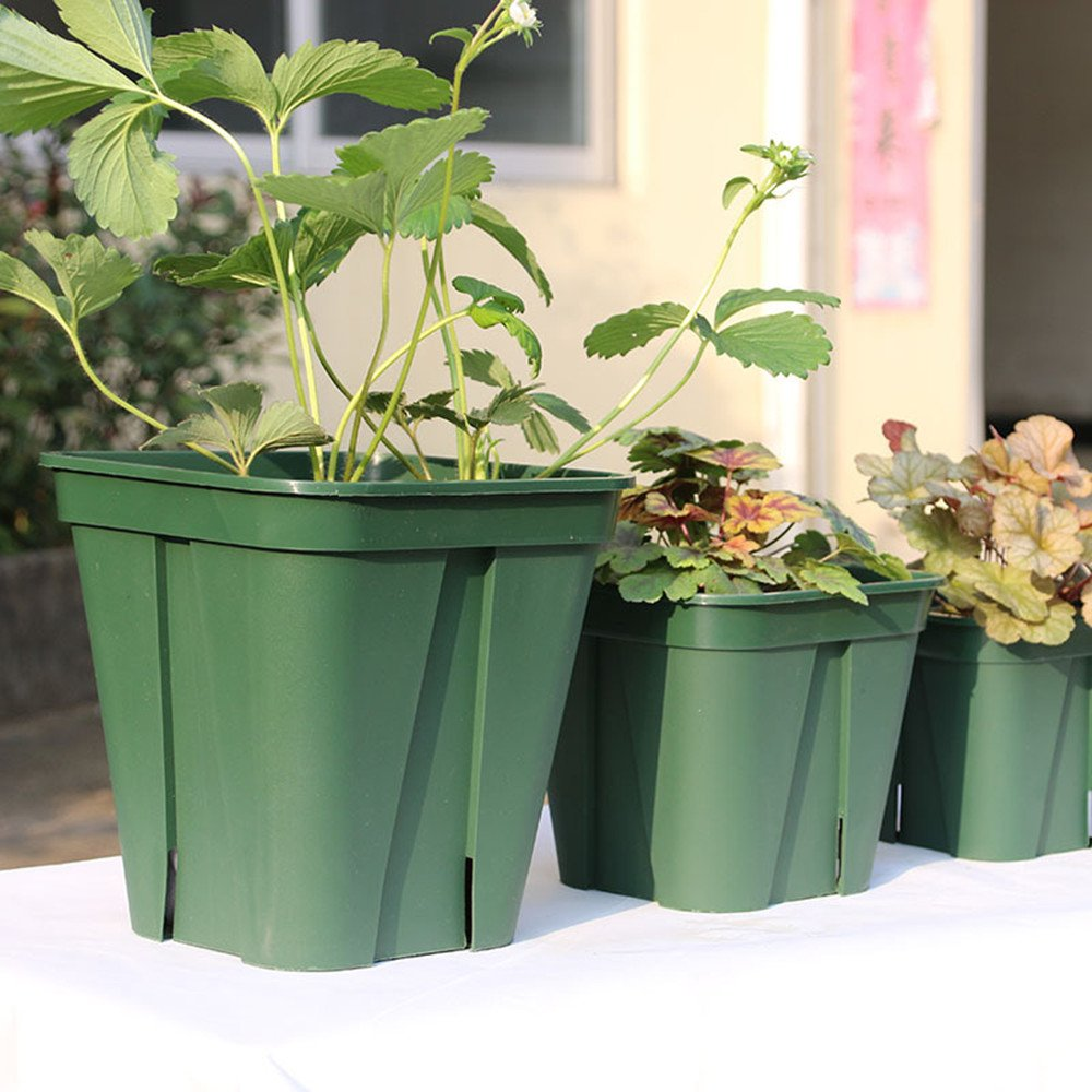 6 Inch Square Plastic Nursery Pots,Reusable, Recyclable - Garden, Greenhouse, Seed Starting (Actual Dimensions 6'' Square By 5'' Deep) (10, 6'')