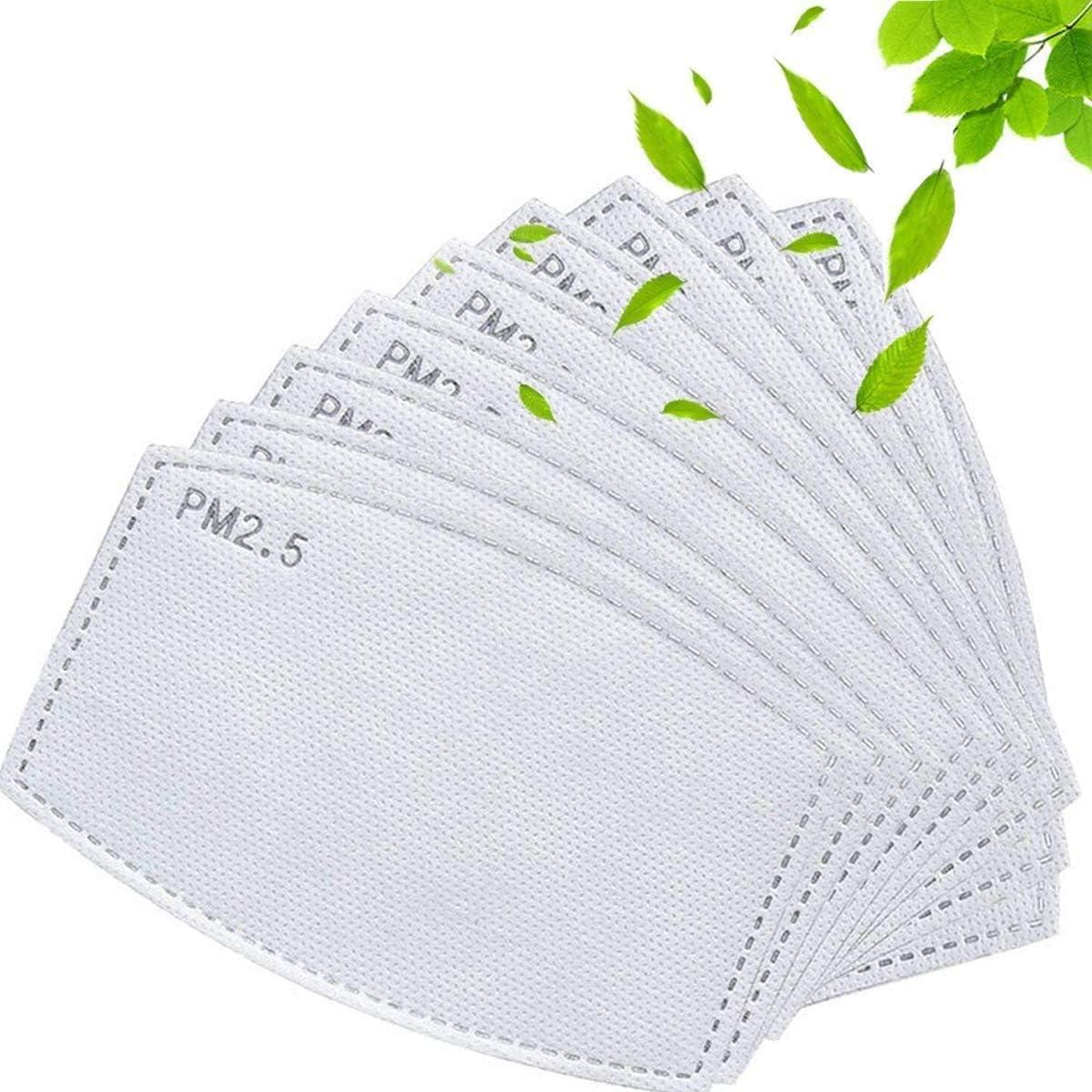 30 PCS Activated Carbon Filter Replaceable Anti Haze Filter