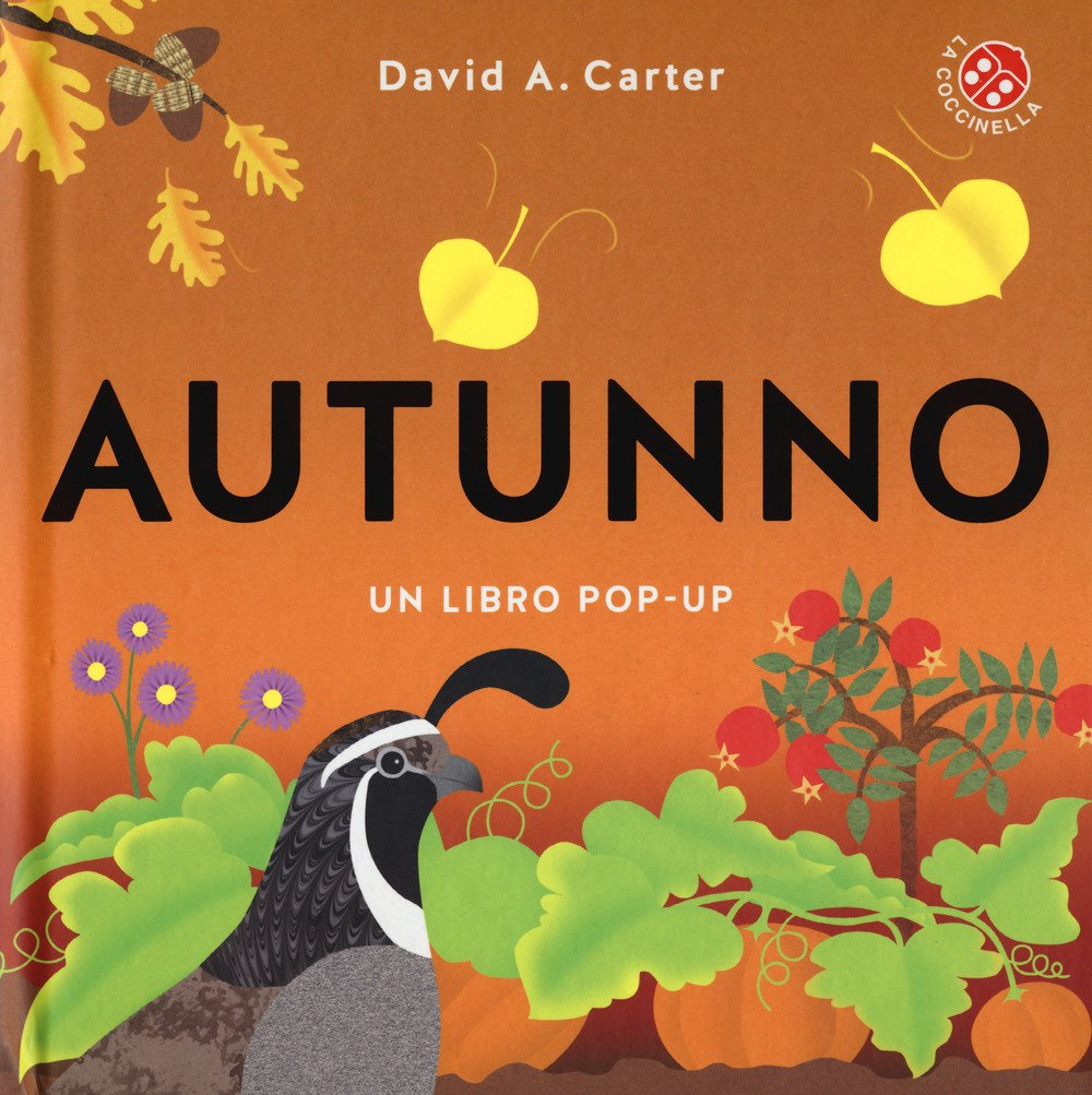Libro pop-up a colori Ediz Autunno