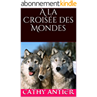 A la Croisée des Mondes (Les Âmes Jumelles t. 2)