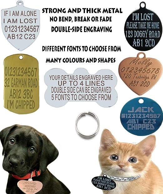Sucre Tags Placa de identificación para perro, perro, gato y gato, diseño de hueso de dos caras: Amazon.es: Productos para mascotas