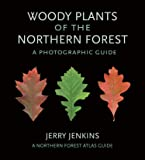 Woody Plants of the Northern Forest: A Photographic Guide