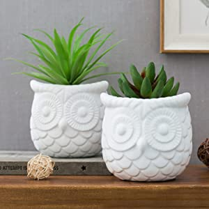 MyGift 4-inch White Owl Design Ceramic Succulent Planter Pots, Set of 2