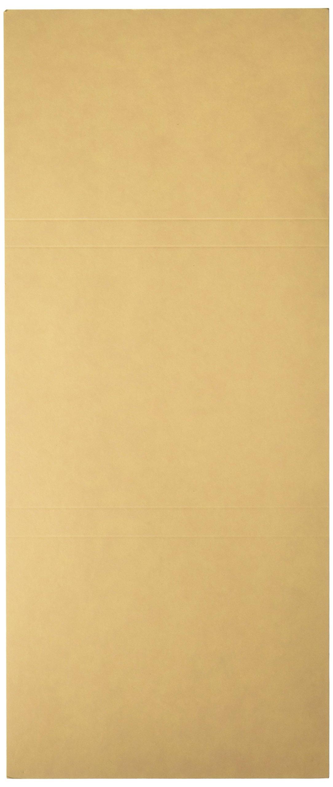 PDC Healthcare F3B File Folder Double Fold for Prescriptions Cardboard, 5-1/2'' x 13'' Buff (Pack of 100)