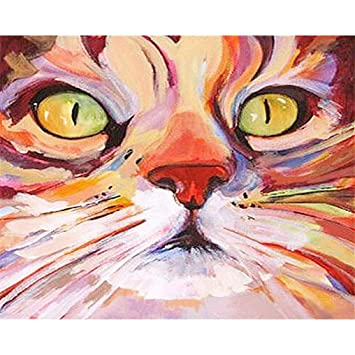 Painted Cat Head Linen Canvas Paint by Numbers DIY Acrylic Painting Kit for Kids /& Adults Beginner 16x20 inch