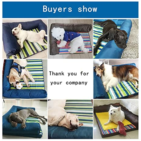 Amazon.com : Wei Zhe- Pet Dog Bed-Soft Winter Mattress Pet Bed for Dogs & Cats Sleep-Density Sponge by handrail-for Head Support Relieves The Animals ...