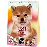 アクティブコーポレーション 2018年 犬 柴犬 カレンダー 卓上 森田米雄 まるごと柴犬 ACL-543